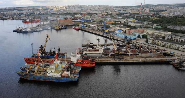 Carbone nel porto di Murmansk