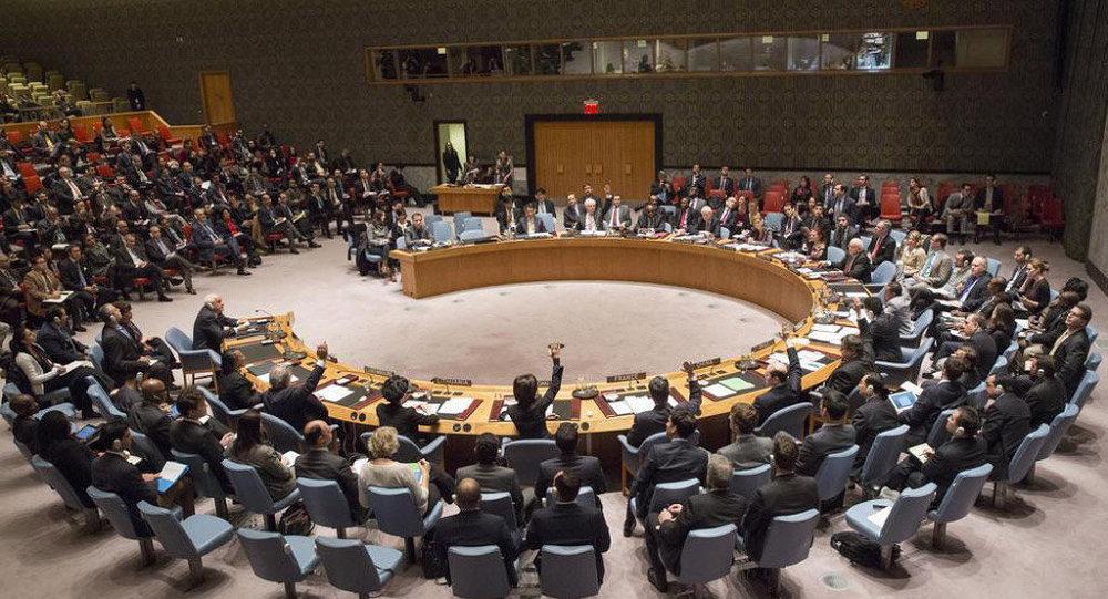 Seduta del Consiglio di Sicurezza dell'ONU