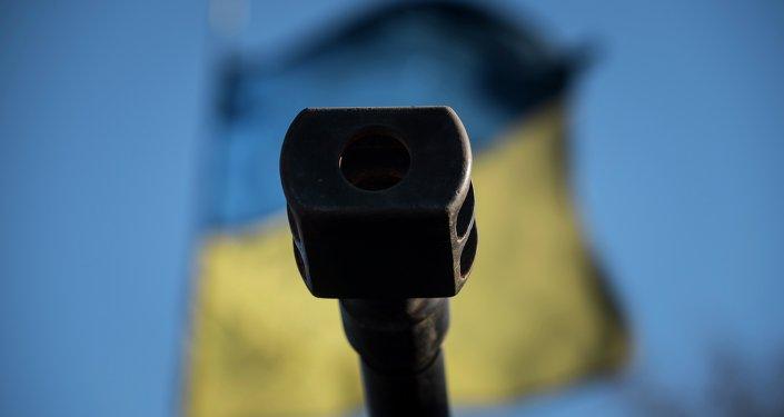 Bandiera ucraina, crisi Donbass