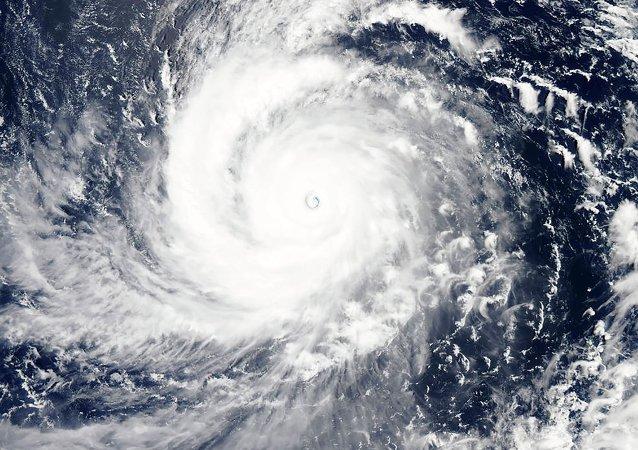Tifone Goni