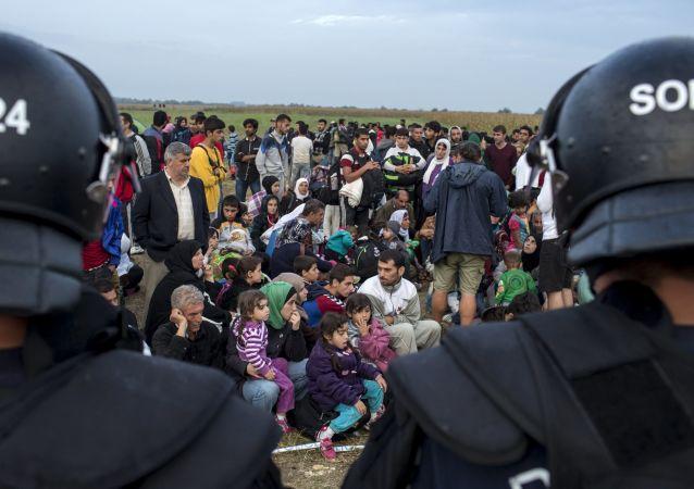 Migranti siriani in Serbia dopo l'attraverso del confine ungherese
