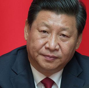 Presidente della Cina Xi Jinping