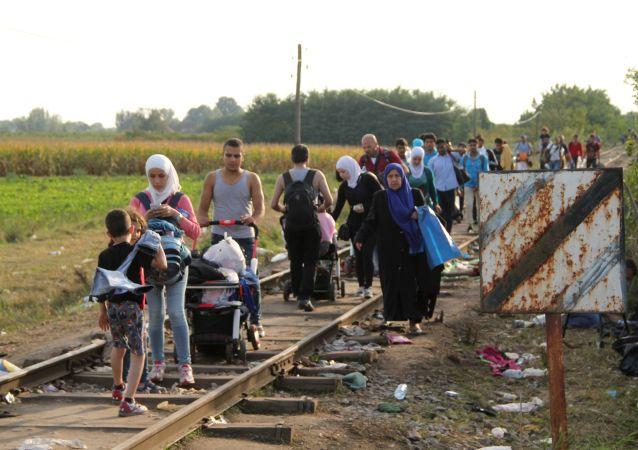 Migranti al confine serbo-ungherese (foto d'archivio)