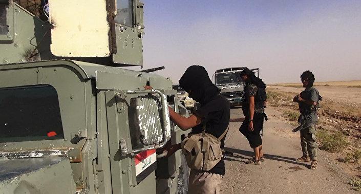 Combattenti ISIS