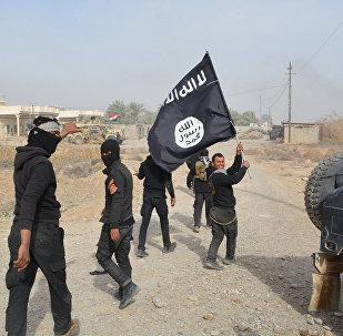 Combattenti ISIS in Iraq (foto d'archivio)