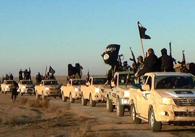 Colonna di combattenti del Daesh