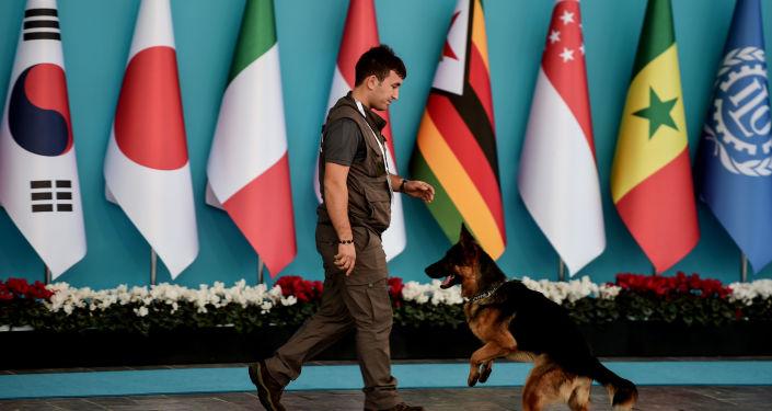 Сотрудник полиции следит за порядком во время саммита G20 в Турции