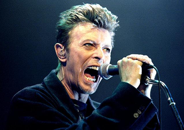 David Bowie al suo concerto a  Vienna