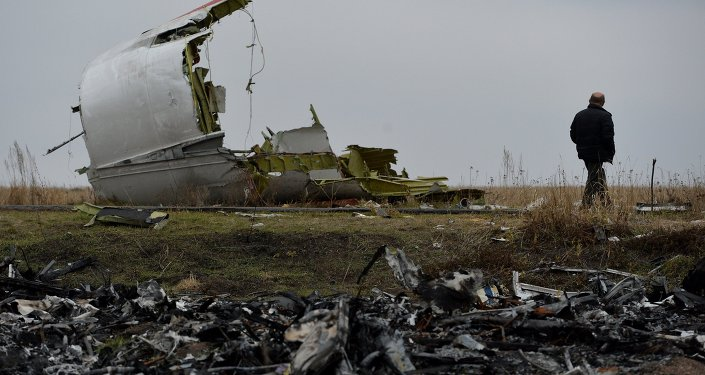 Rottami Boeing Malaysia Airlines caduto nel Donbass, Ucraina