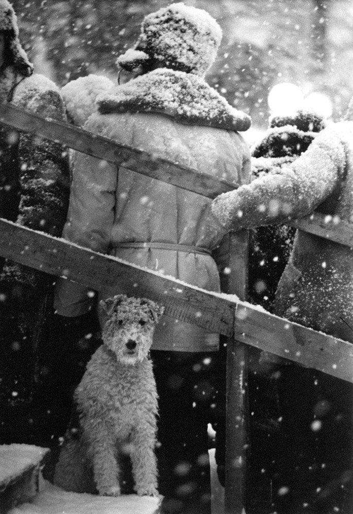 Un tuffo nell'inverno del passato