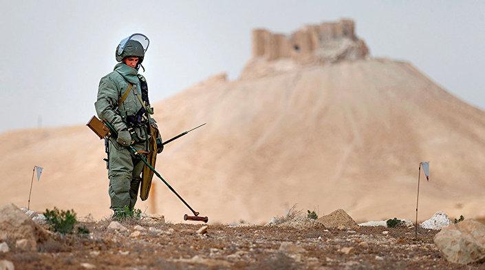 Il lavoro degli esperti russi a Palmira