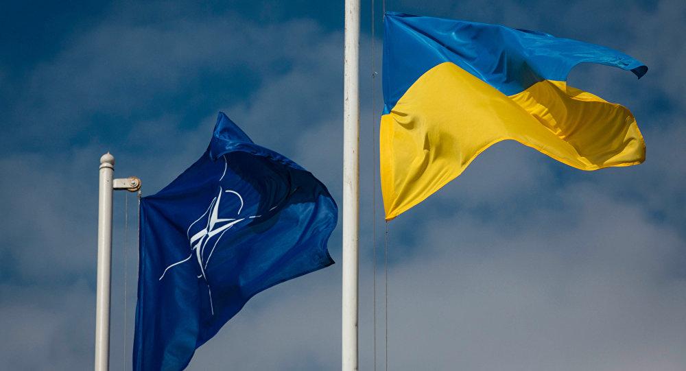 Bandiere di Ucraina e NATO