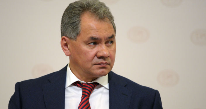 Ministro della Difesa della Russia Sergey Shoygu