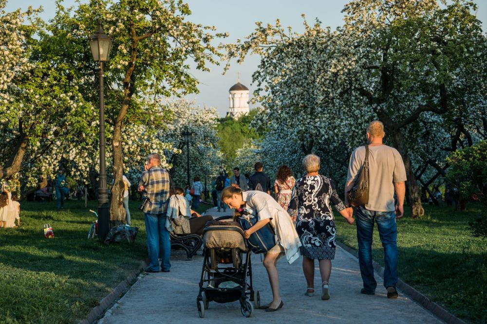 Una passeggiata nel parco di Kolomenskoe
