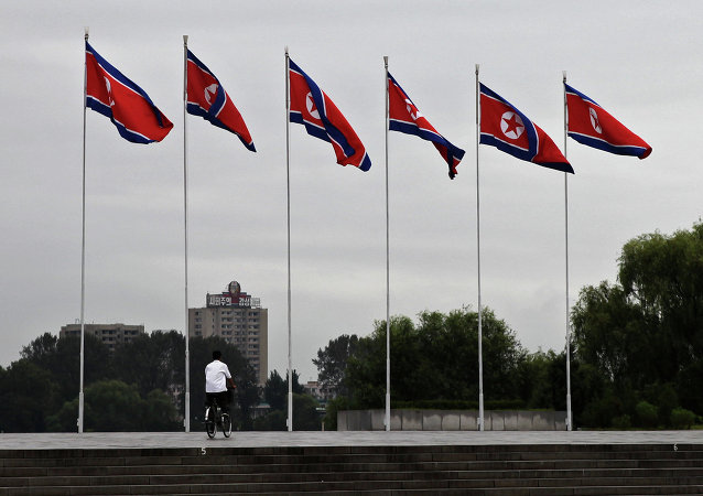 La bandiera nordcoreana