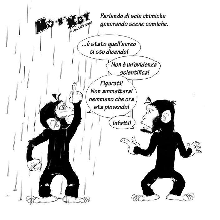 Vignetta, Marco Russo