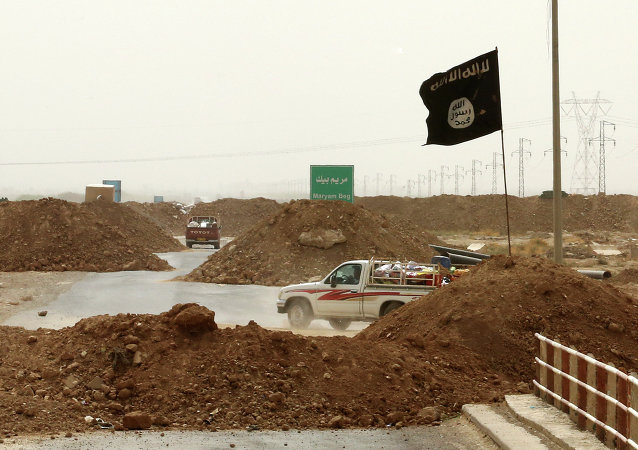 Militanti del Daesh