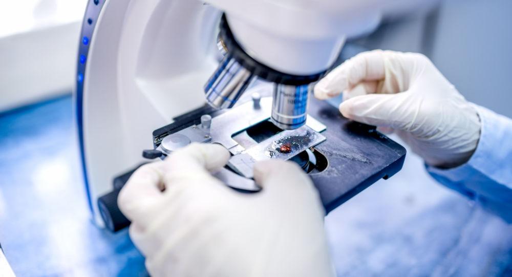 Uno scienziato al lavoro