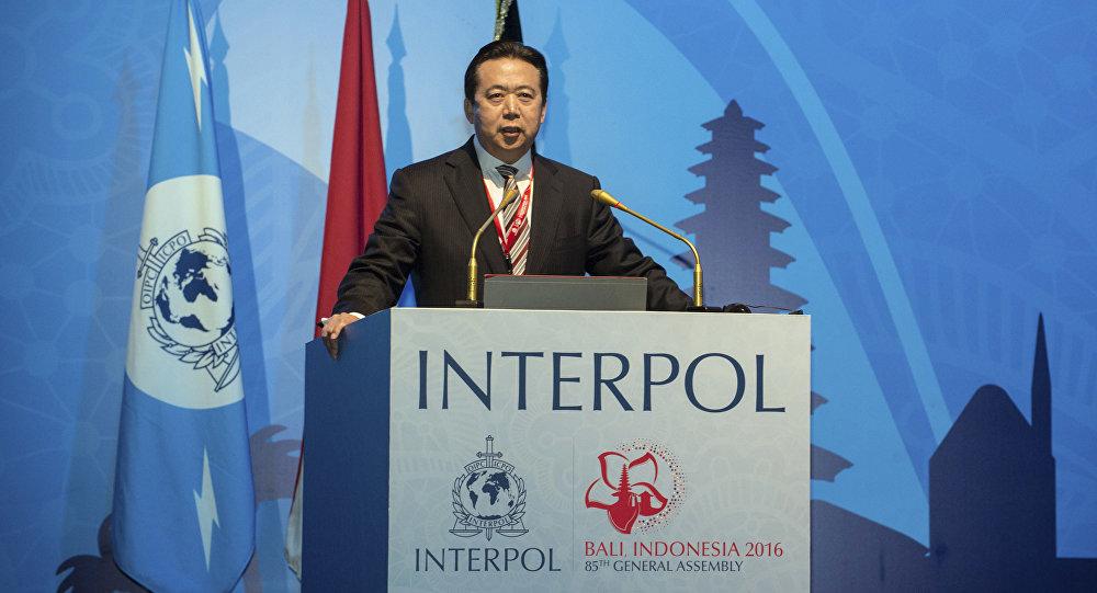 Meng Hongwei, nuovo direttore dell'Interpol
