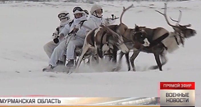 Renne e husky trainano soldati russi