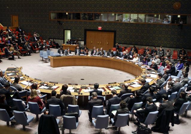 Consiglio di Sicurezza ONU