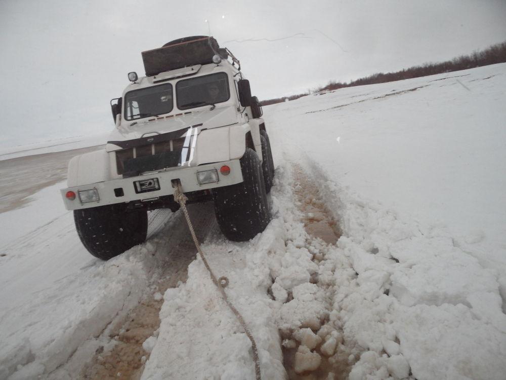 Viaggio nella Tundra