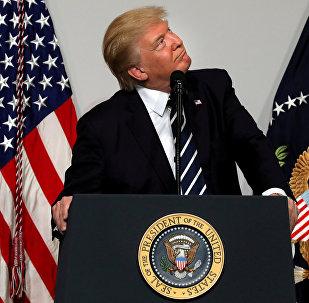 Presidente degli USA Donald Trump