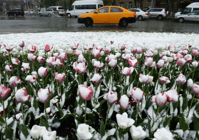 Una nevicata a Novosibirsk (foto d'archivio)