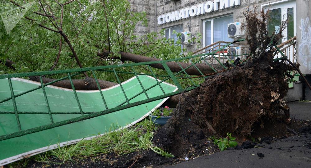 Russia, violenta tempesta a Mosca: almeno 7 morti e decine di feriti