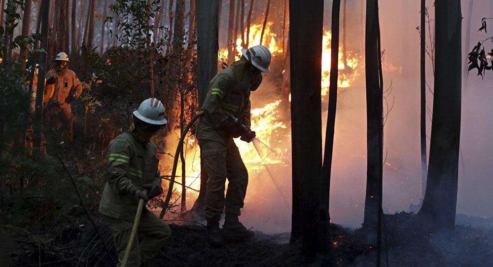 Vigili del fuoco portoghesi