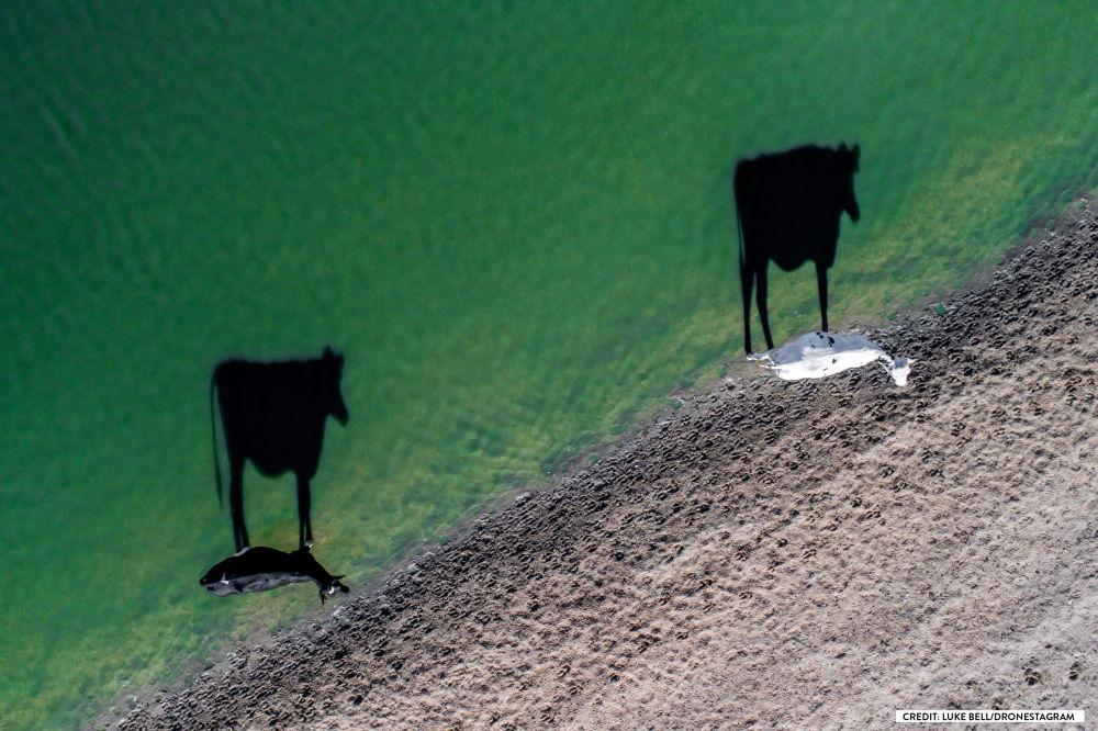 Le 10 foto più belle scattate dai droni