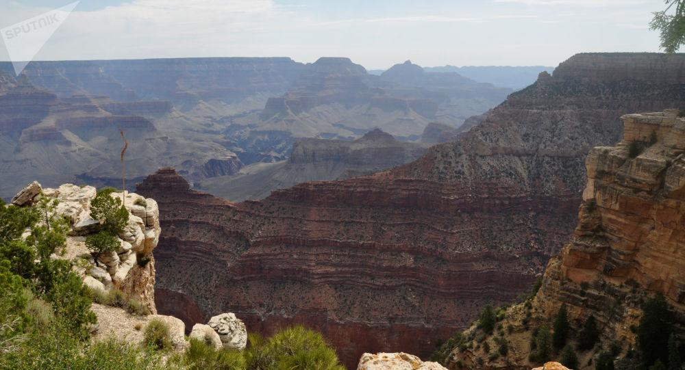 Parco del Gran Canyon, Arizona, USA