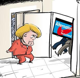 Elezioni parlamentari in Germania