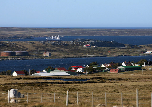 Isole Falklands. (File)