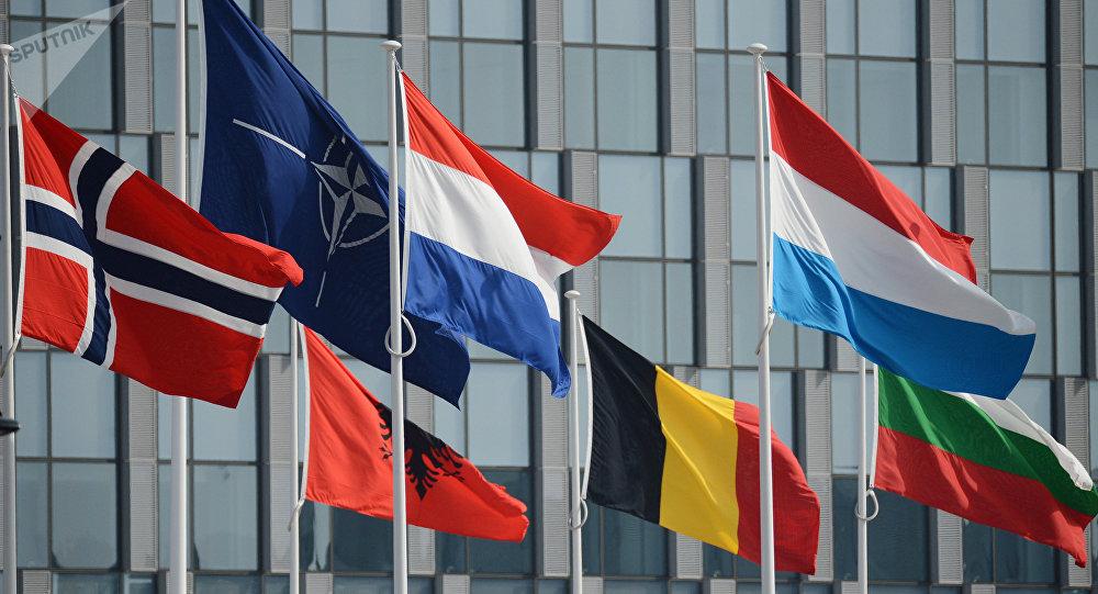 Bandiere dei Paesi NATO