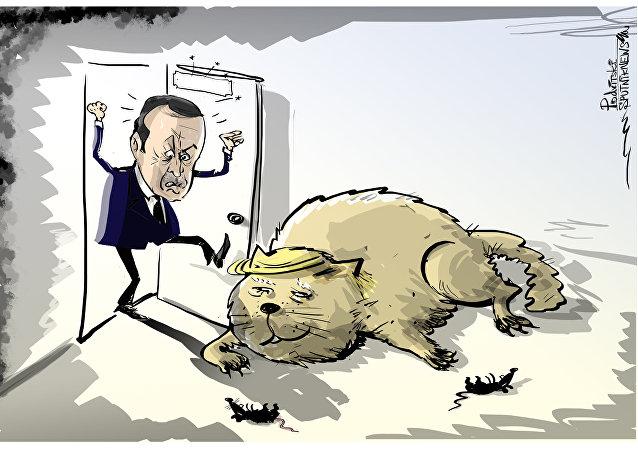Erdogan accusa Washington di agire contro la Turchia, l'Iran e la Russia in Siria