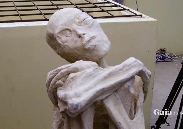 Mummia misteriosa