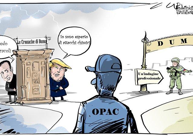 La Russia è pronta a cooperare per l'organizzazione di una missione OPAC (Organizzazione per la proibizione delle armi chimiche) nella città siriana di Duma.