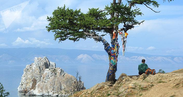 L'albero dei desideri sull'isola di Olkhon che si trova sul lago Bajkal