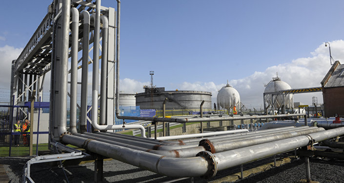 General views of the INEOS plant in Grangemouth as the first shipment of shale gas from the United States arrived in Britain. (File)