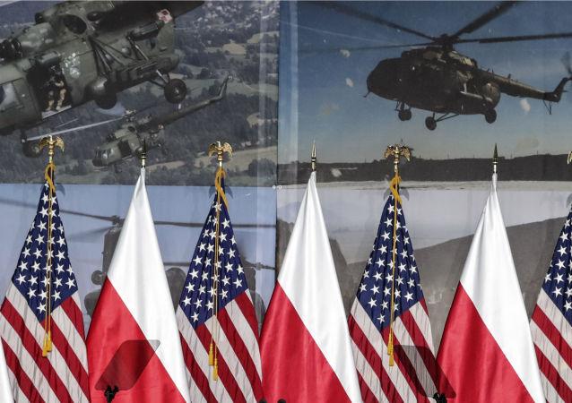 Bandiere Polonia Usa