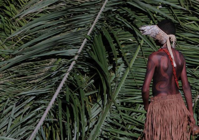Amazzonia (foto d'archivio)