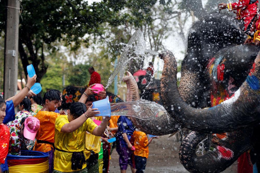 Gli uomini fanno a gavettoni con gli elefanti ai festeggiamenti del Capodanno in Tailandia.