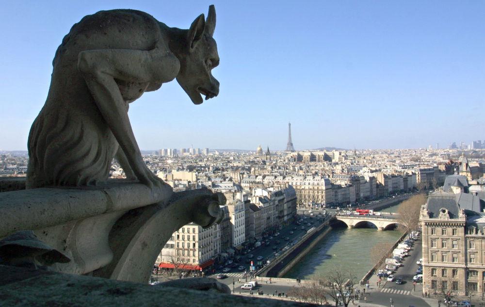 Un Gargoyle osserva Parigi dall'alto della cattedrale di Notre Dame