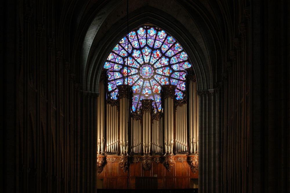 1 febbraio 2004 - L'organo della cattedrale di Notre Dame