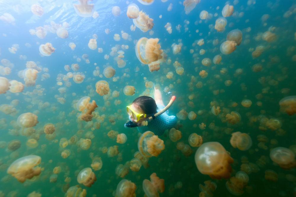 Una ragazza durante un'immersione nel Lago delle Meduse a Palau