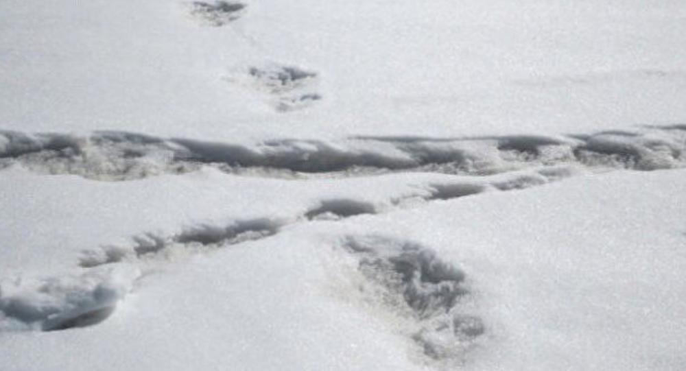 Ecco le impronte dello Yeti