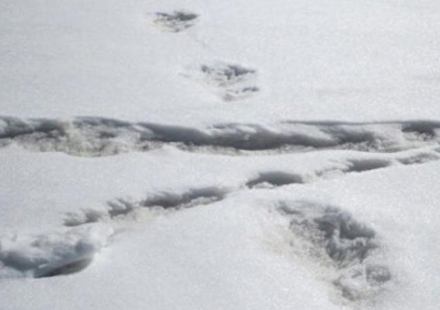 India, i militari trovano tracce dello yeti sull'Himalaya