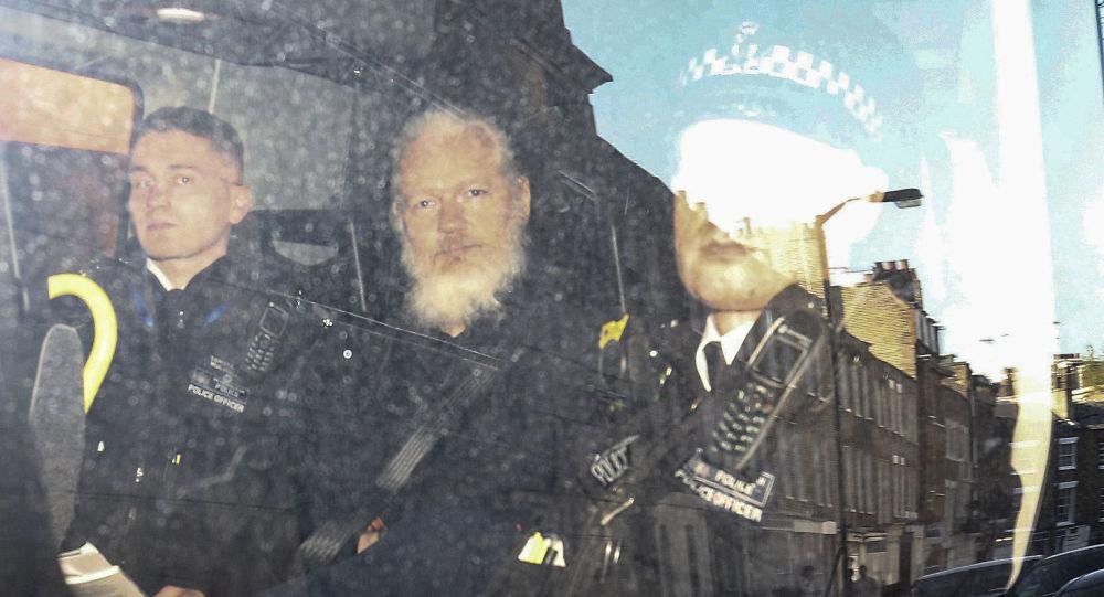 Onu, segni di torture psicologiche su Assange