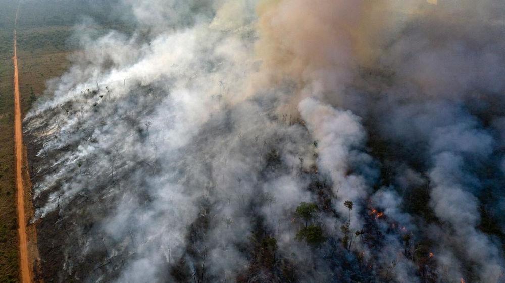Alcuni stati in Brasile hanno dichiarato lo stato di emergenza.